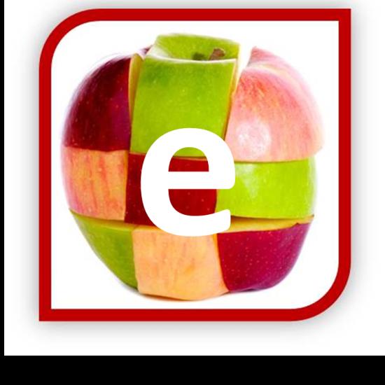 Diversity Awareness E